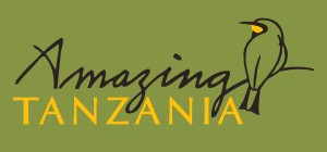 Amazing Tanzania Logo
